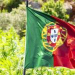 Portugal aprova regulamentação para cultivo de cânhamo