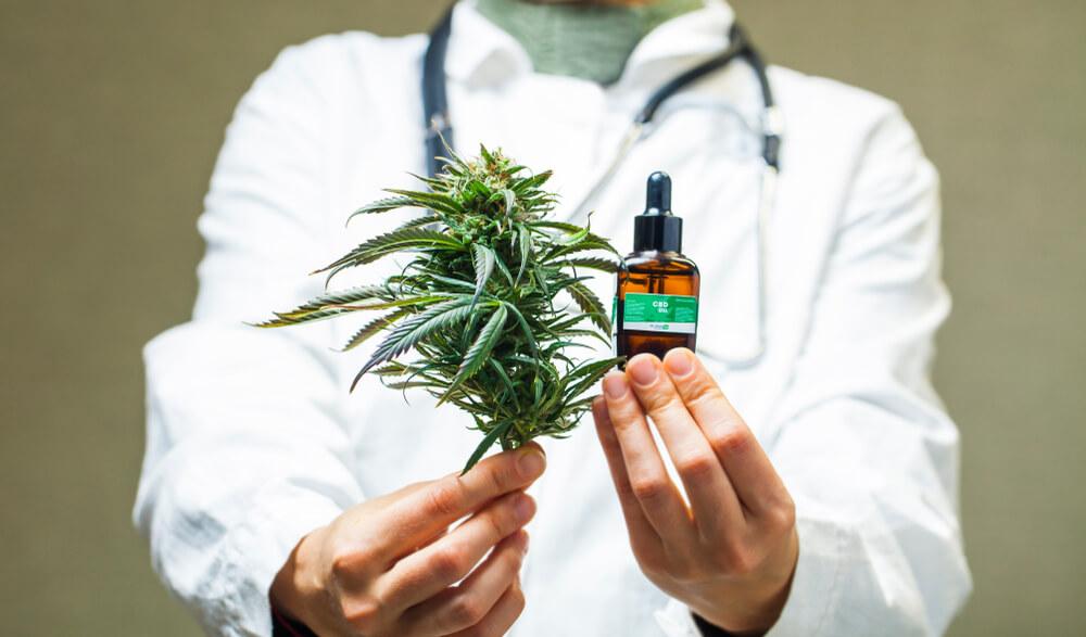 sativa qual e uso medicinal