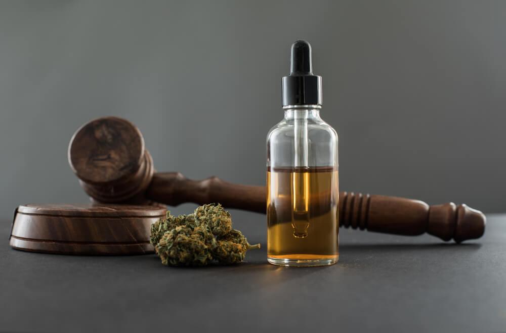 cannabis medicinal brasil regulacoes e regras