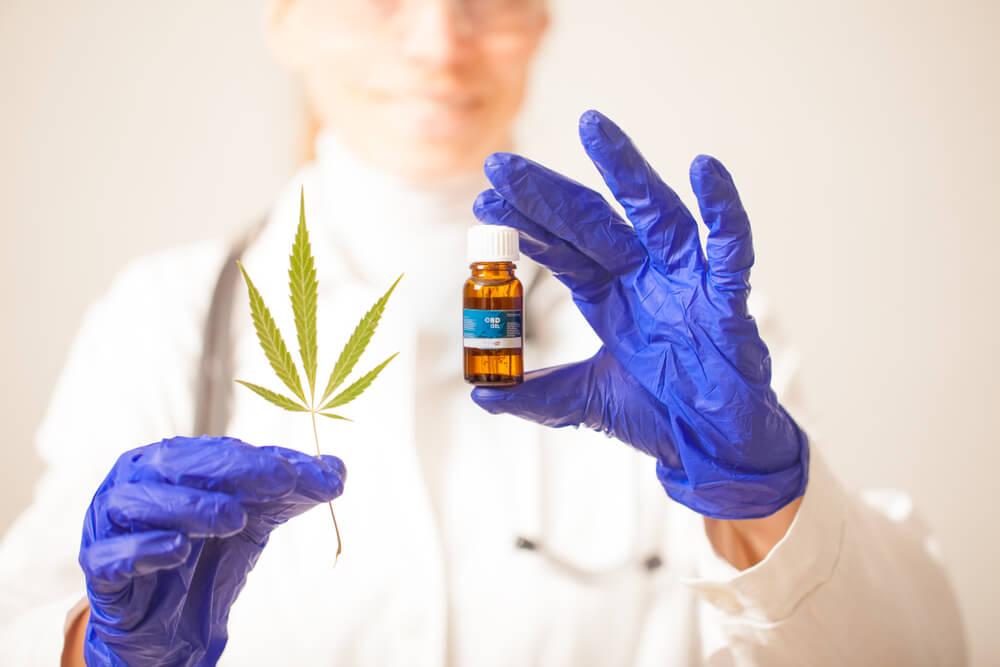 cannabis medicinal brasil produzidos