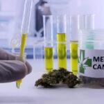 canabidiol dependencia quimica como funciona tratamento