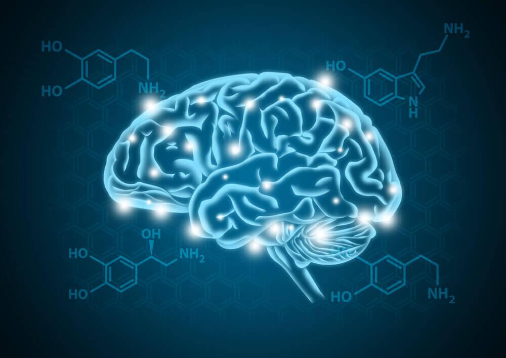 canabidiol dependencia qumica dopamina ciclo corpo humano
