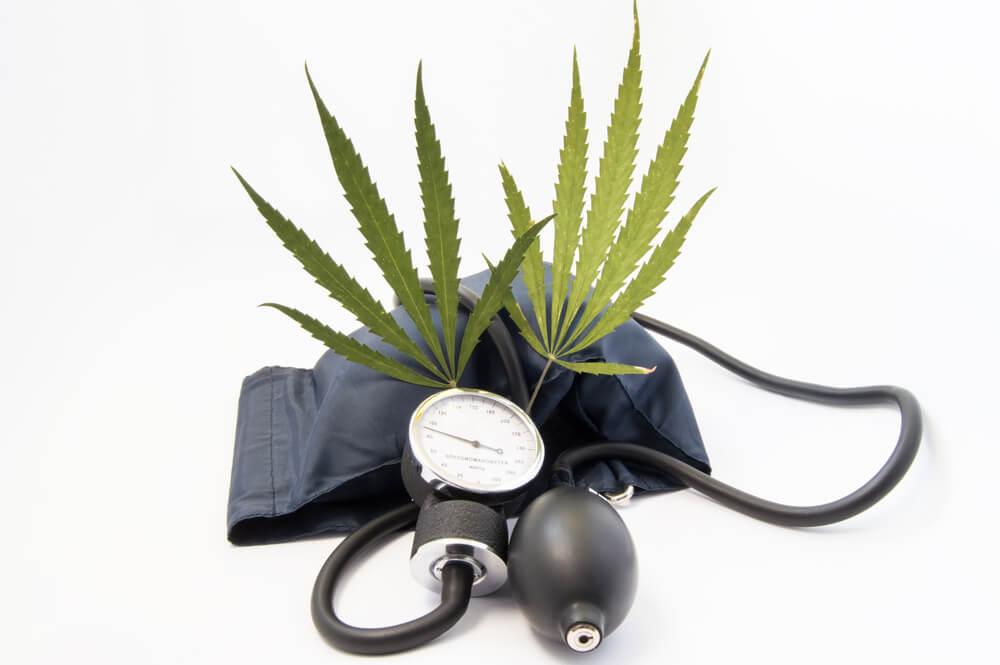 hipertensão tratamento por que canabidiol pode ser uma boa opção