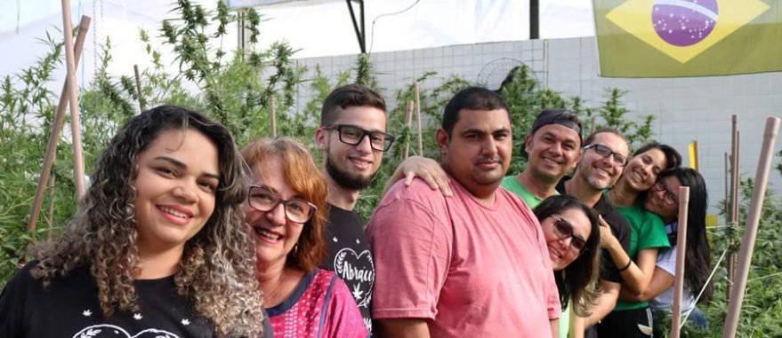 Associados da Abrace conhecem o cultivo das plantas (Arquivo Pessoal)