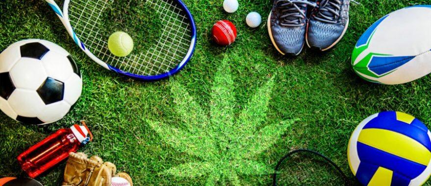 cannabis e esportes