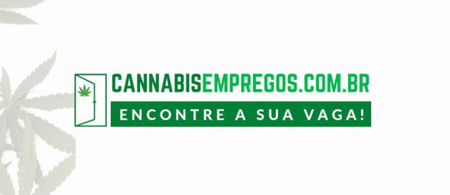 cannabis empregos