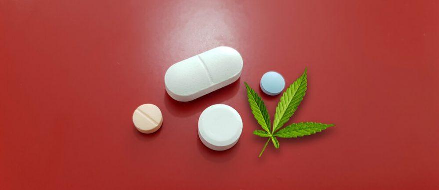 dia-do-mal-de-parkinson-onde-conseguir-prescricao-medica-para-compra-de-medicamentos-a-base-da-canabidiol
