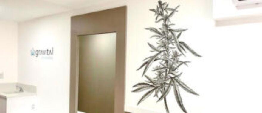 clínica gravital, especializada em cannabis, abre em porto alegre