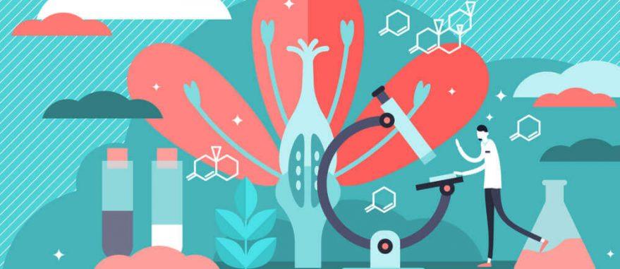 homeostase o que e importancia regulacao com CDB