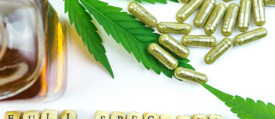 óleo de cannabis extração full spectrum beneficios para saude