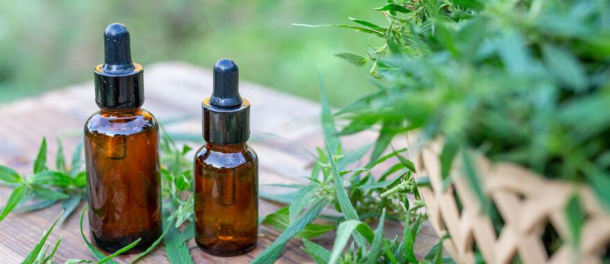 oleos-cannabis