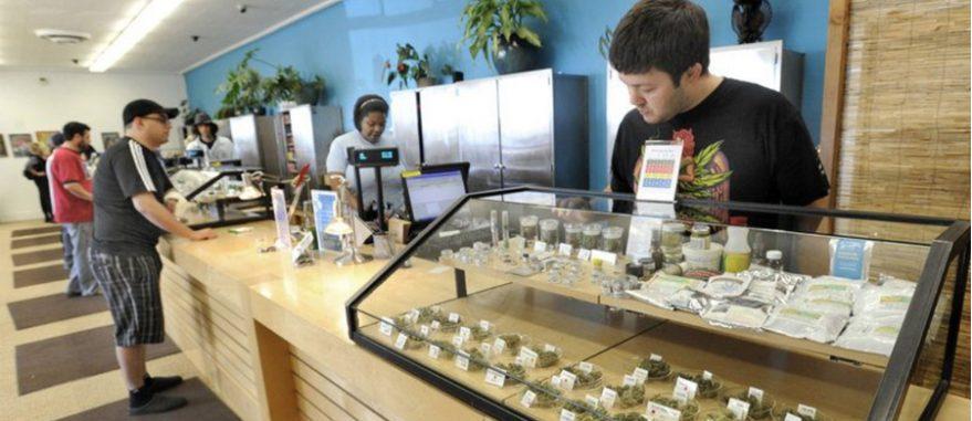 Budtenders são profissionais especializados em flores de Cannabis